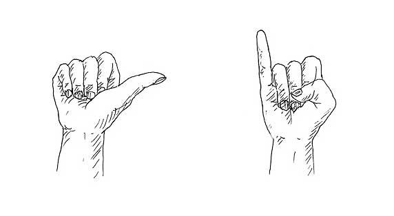 Hooger Nüsse Buchillustration: mit Händen zählen